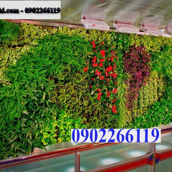 14310456_1104629812954386_5936028818597466202_o - Copy